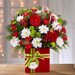 The FTD Holiday Cheer Bouquet