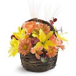 The Sensational Splendor Basket