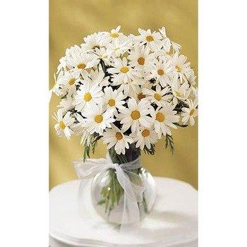 The Daisy Vase