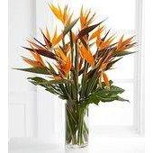 Enticing Luxury Bouquet