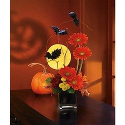 Boo-tiful Bats