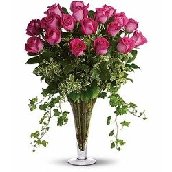 Dreaming in Pink -18 Long Stemmed Pink Roses