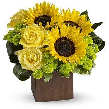 Teleflora's Sunflower Fantasy