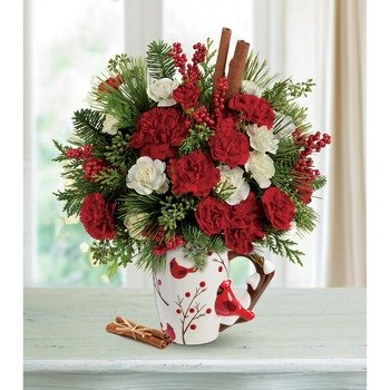 Send a Hug Christmas Cardinal by Teleflora