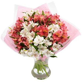 Funeral Bouquet Asltromeria