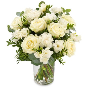 White treasure (Vase not included)
