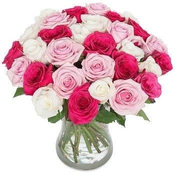 Rose temptation (Vase not included)