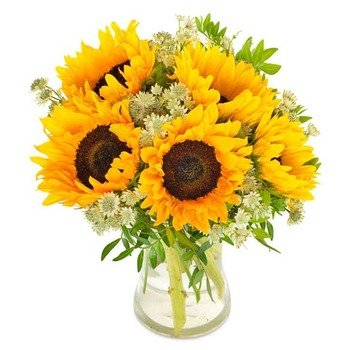 Sunny Sunflowers (Vase not included)