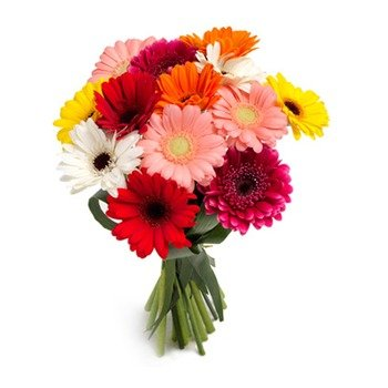 Bouquet of Colorful Gerberas