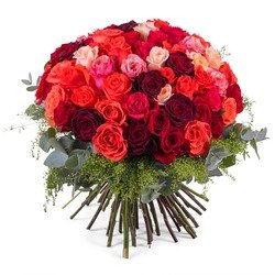 60 Short-stemmed Multicoloured Roses