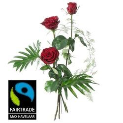 3 Red Max Havelaar-Roses Medium Stem with Green