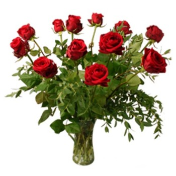 12 red roses (Vase not Included)