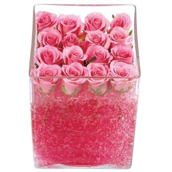 Pink Roses in Gel