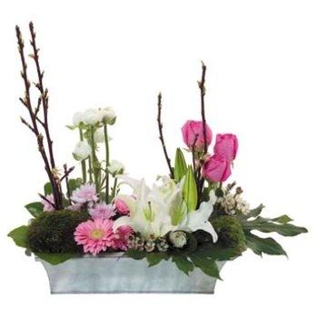 Arrangement of Cut Flowers