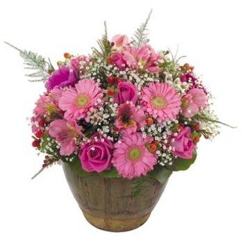Arrangement of Cut Flowers - Pink