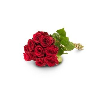 10 red roses (Vase not included)