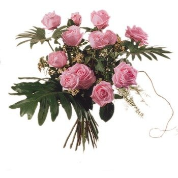 12 Pink Roses with Green