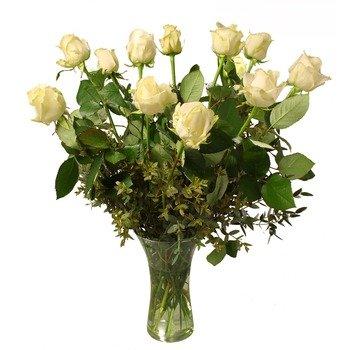 12 White roses (Vase not included)