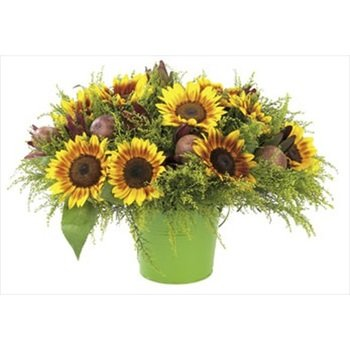 Summer Fun bouquet (Vase Not Included)