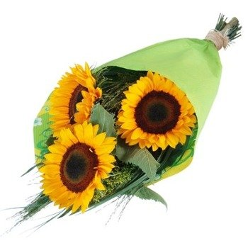 Three sunflowers composition
