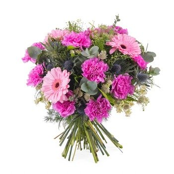 Bouquet of carnations and gerbera daisies (Vase Not Included)