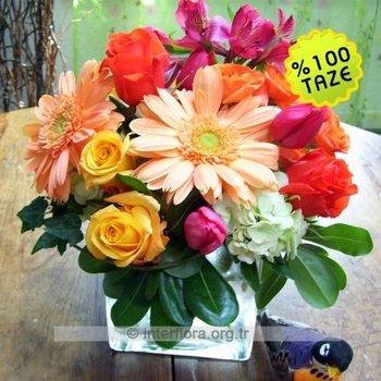 Arrangement of Cut Flowers in Vibrant Colors