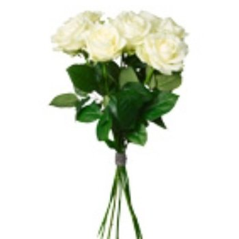 Bouquet of White Roses (Vase Not Included)
