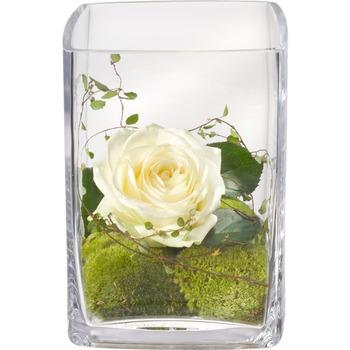 Warm Greetings (including Vase)