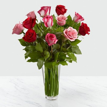 12 Red & Pink Roses in Vase