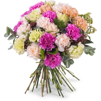 Bouquet of multicoloured carnations (Vase Not Included)