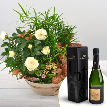 Corner of Paradise with Champagne!