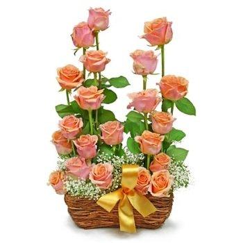 Rose garden composition