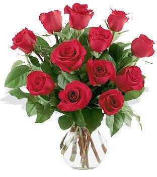 One Dozen Red Roses Arranged in Vase