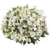 High Arrangement �Elegance�