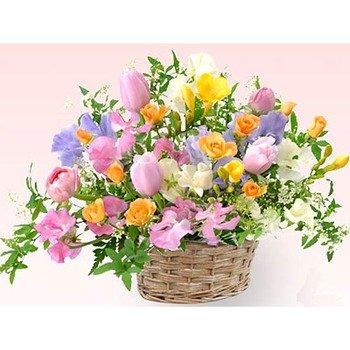 Gentle Spring