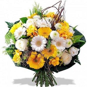 Solaris Bouquet