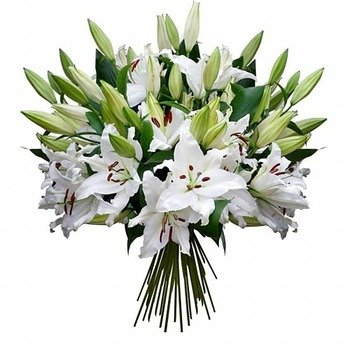 Almudaina Bouquet