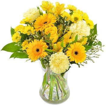 Golden Sunshine (Vase not included)